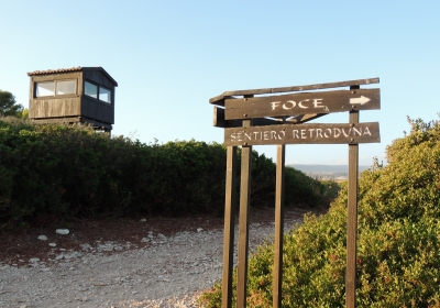 Casa Vacanze Appartamento Marina Di Ragusa Apt Il Gufo